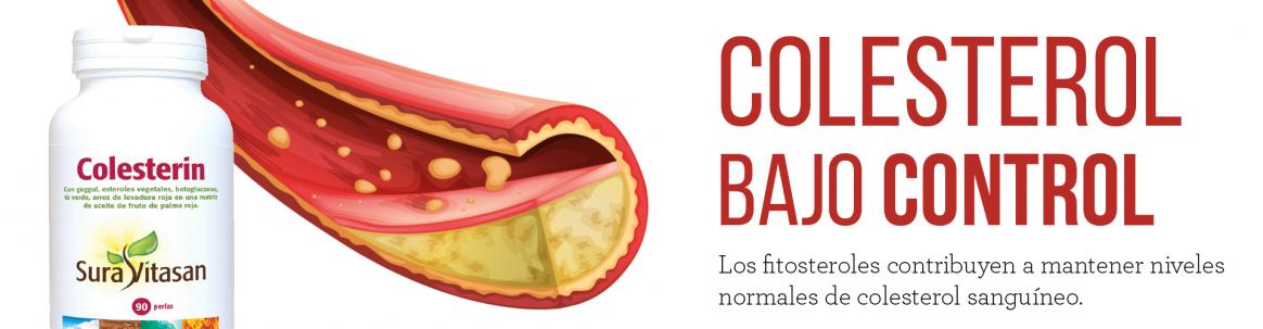 Colesterin