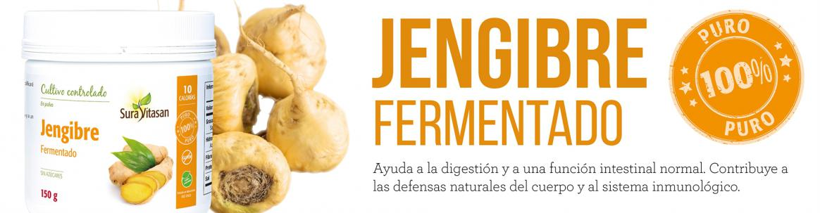 Jengibre fermentado